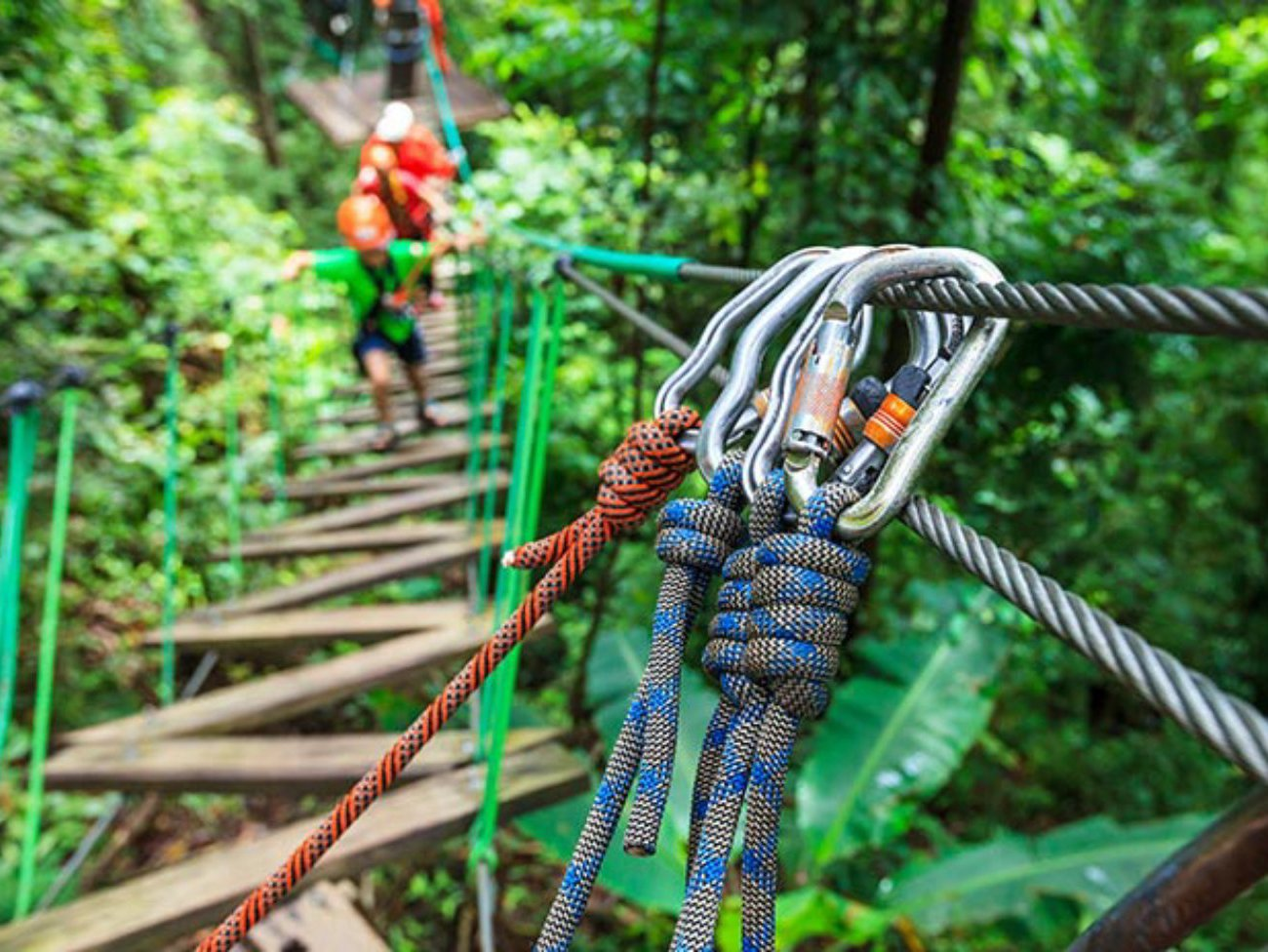 Go Ape for Groups in Newcastle