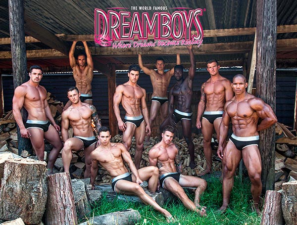 Hen Party Dreamboys Male Strippers