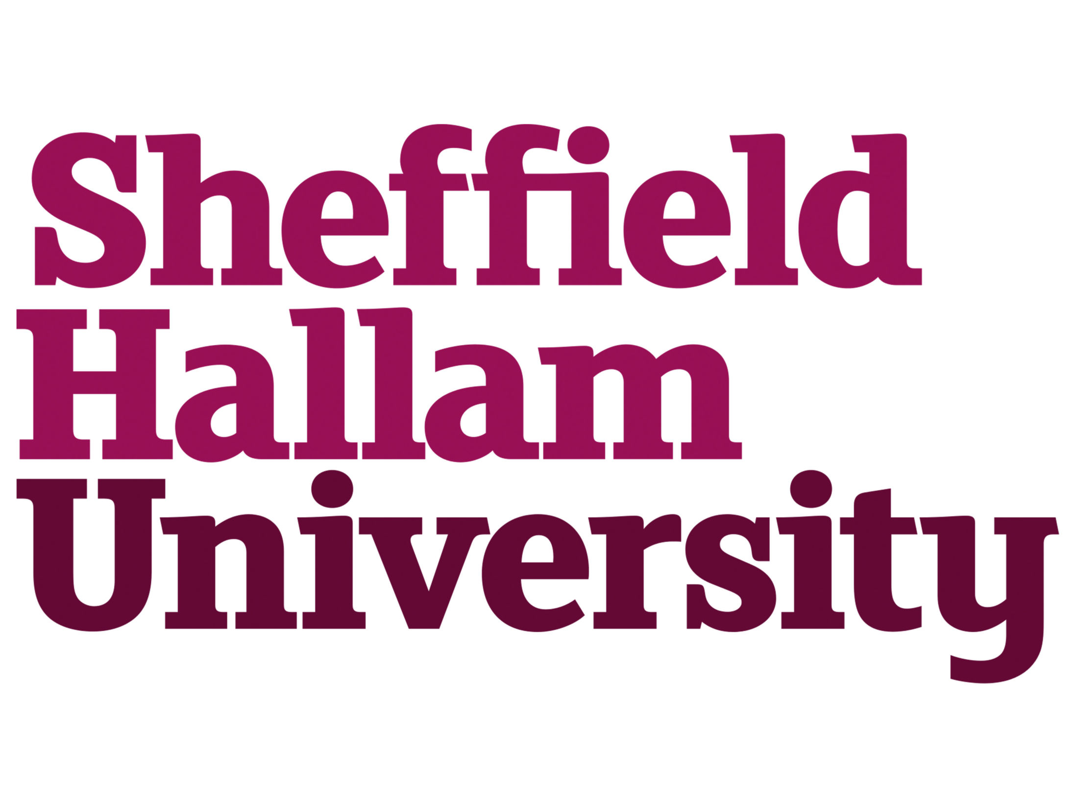 Sheffield Hallam University Team Building Review
