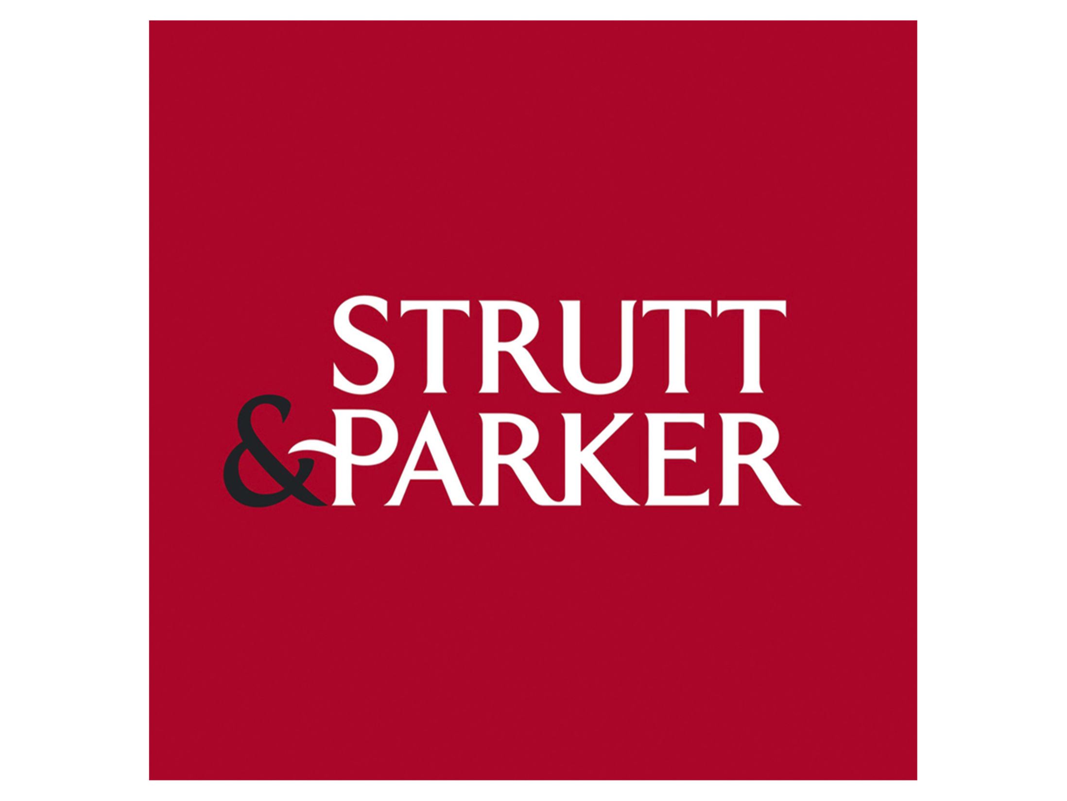 Strutt and Parker Team Building Review