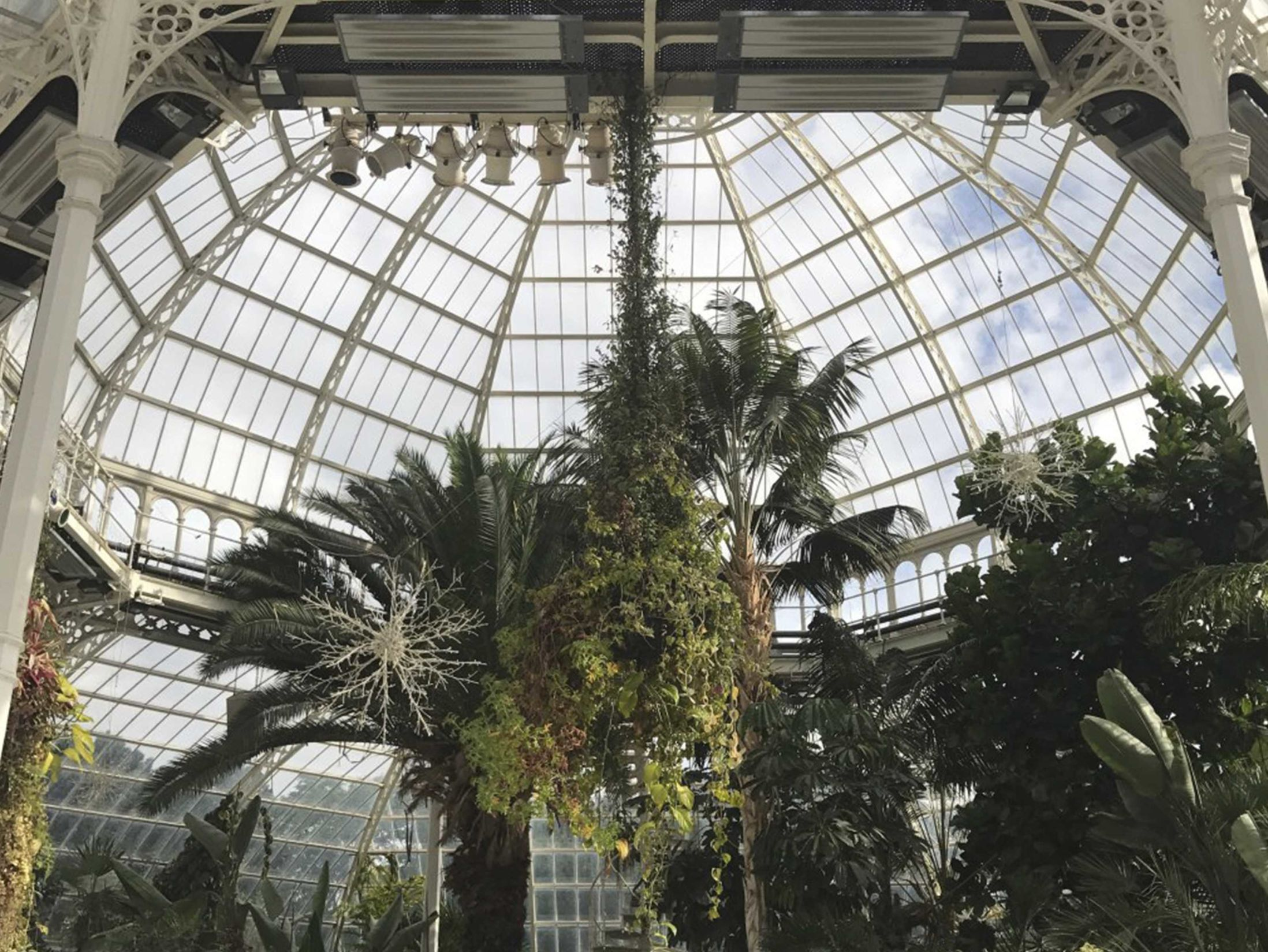 15 Large Christmas Party Venues in the North West - Palm House at Sefton Park (Liverpool)