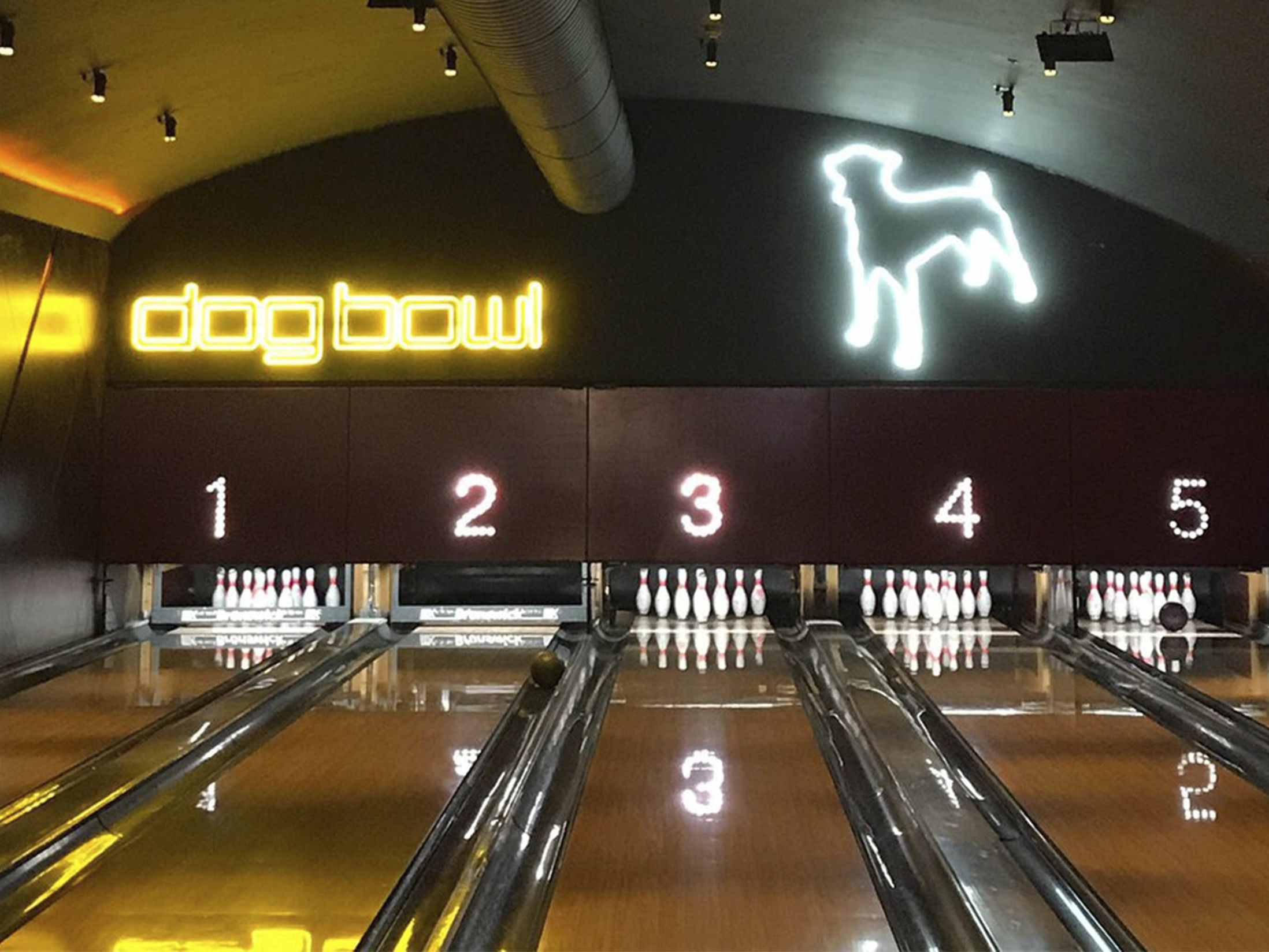 Best Bars in Manchester - Dog Bowl