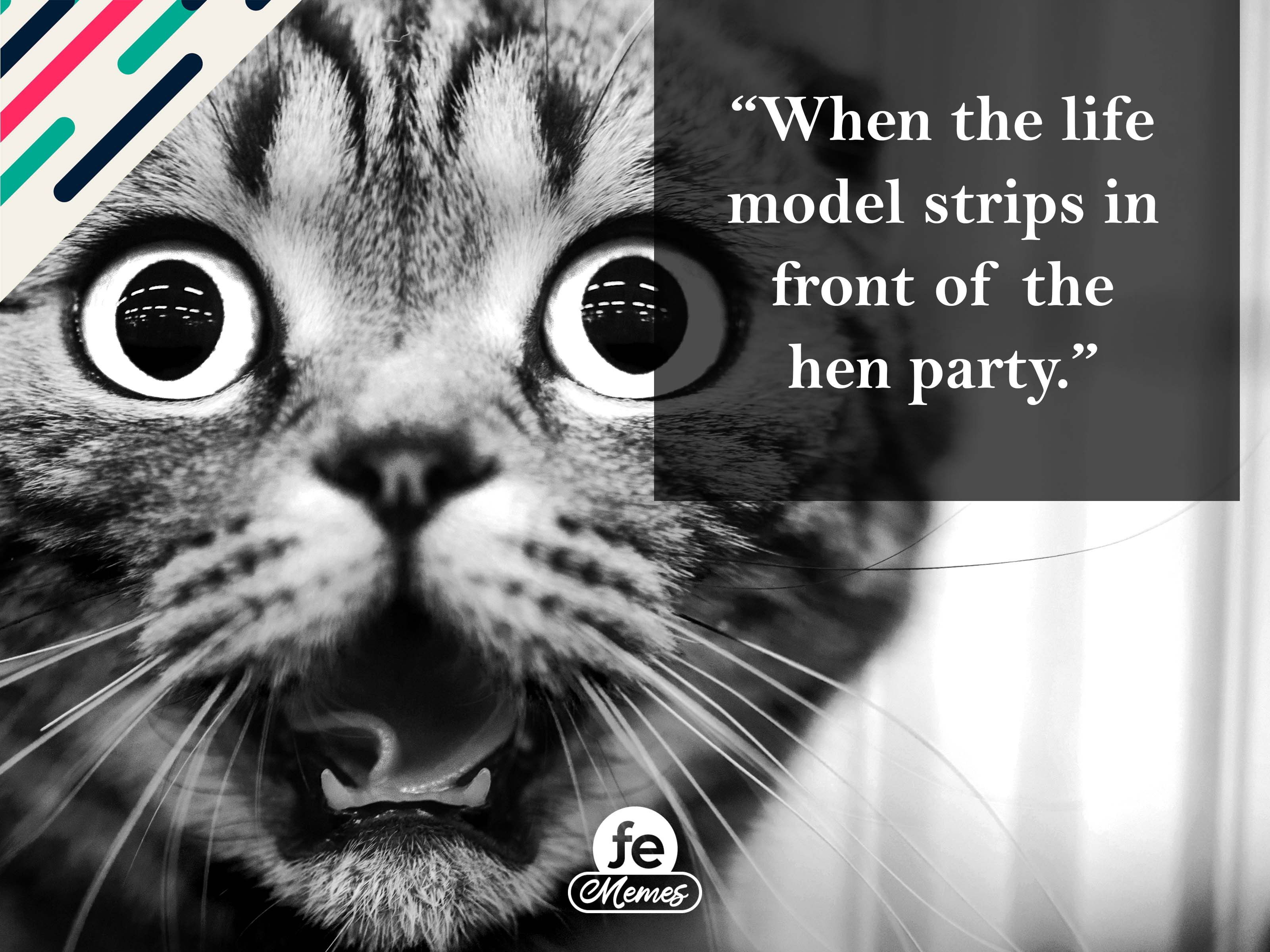 When the life model strips in front of the hen party - Meme 10