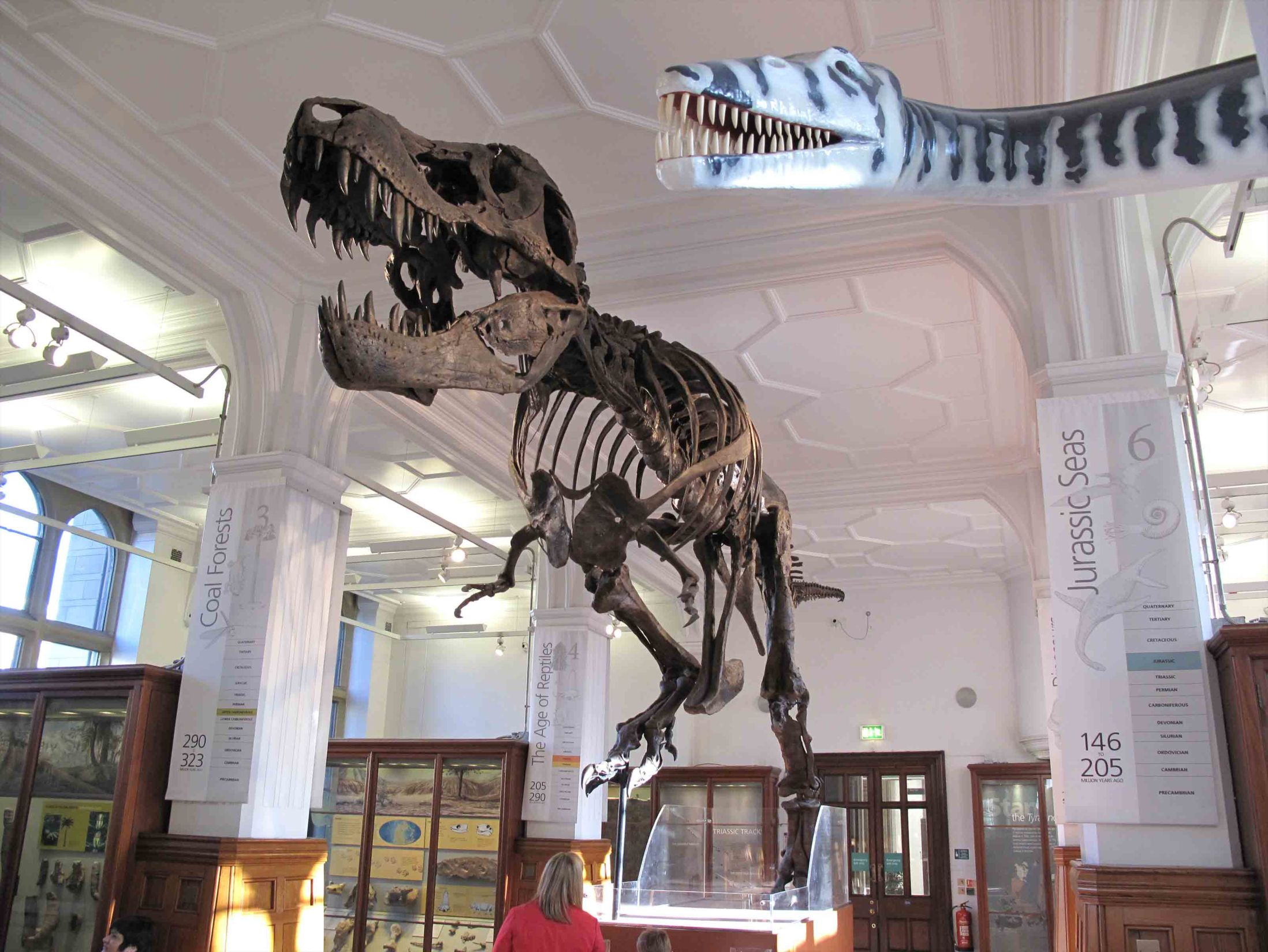 Things to Do in Manchester - Manchester Museum
