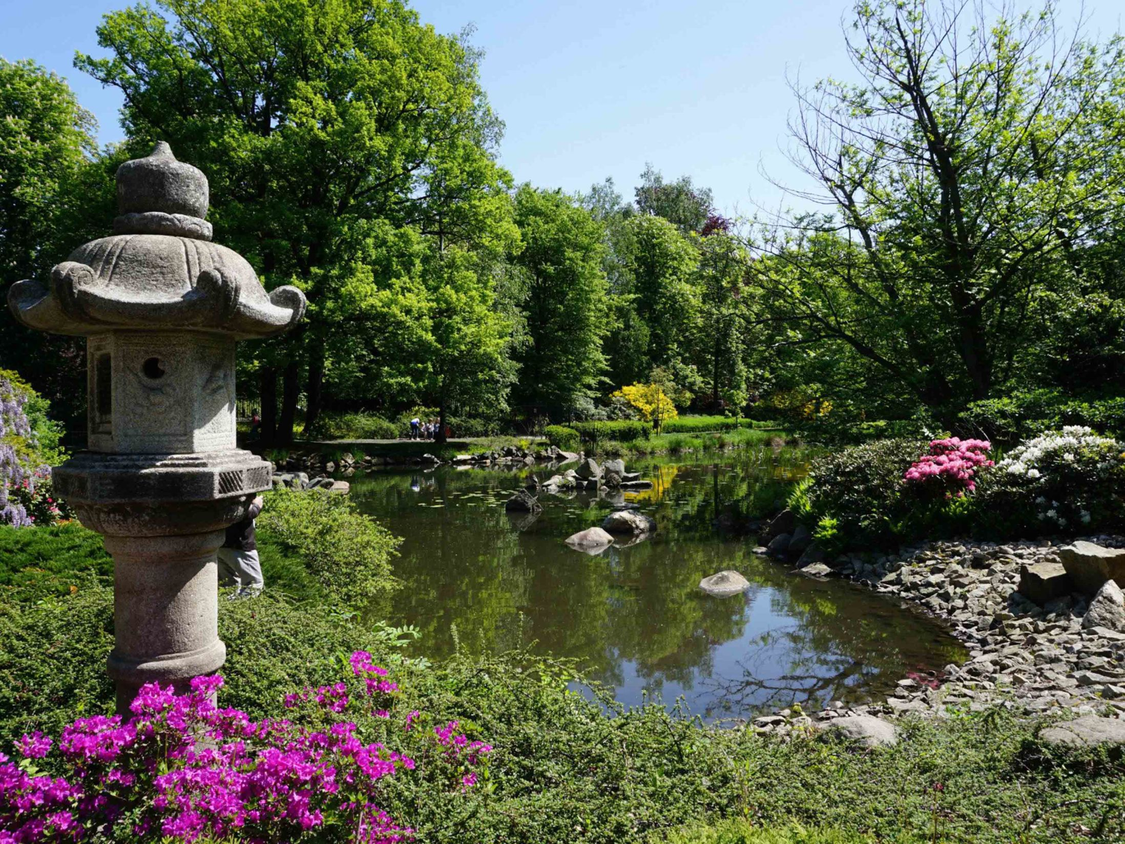 Things to do in Wroclaw - Wroclaw Japanese Garden