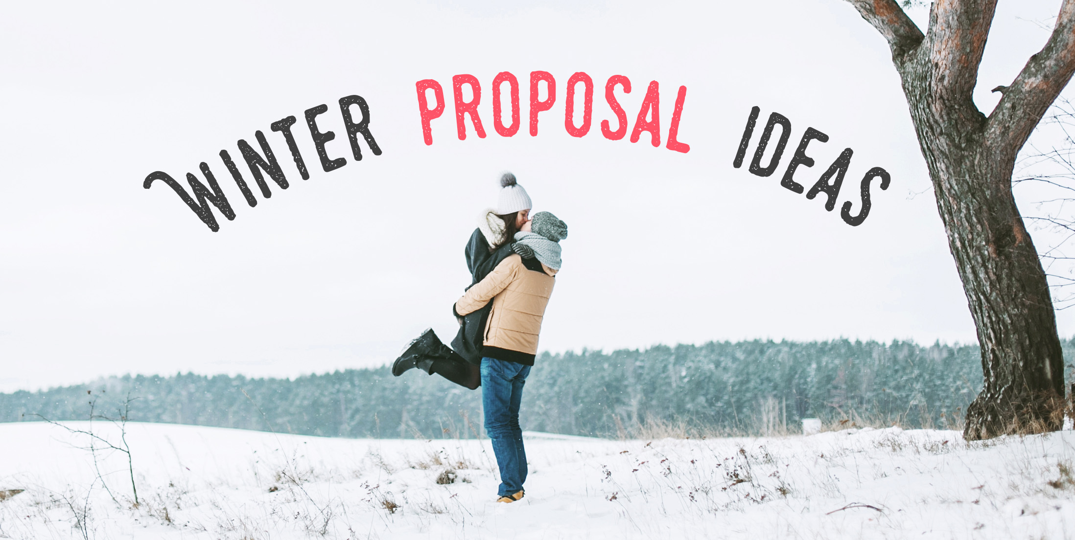 proposal ideas for the winter