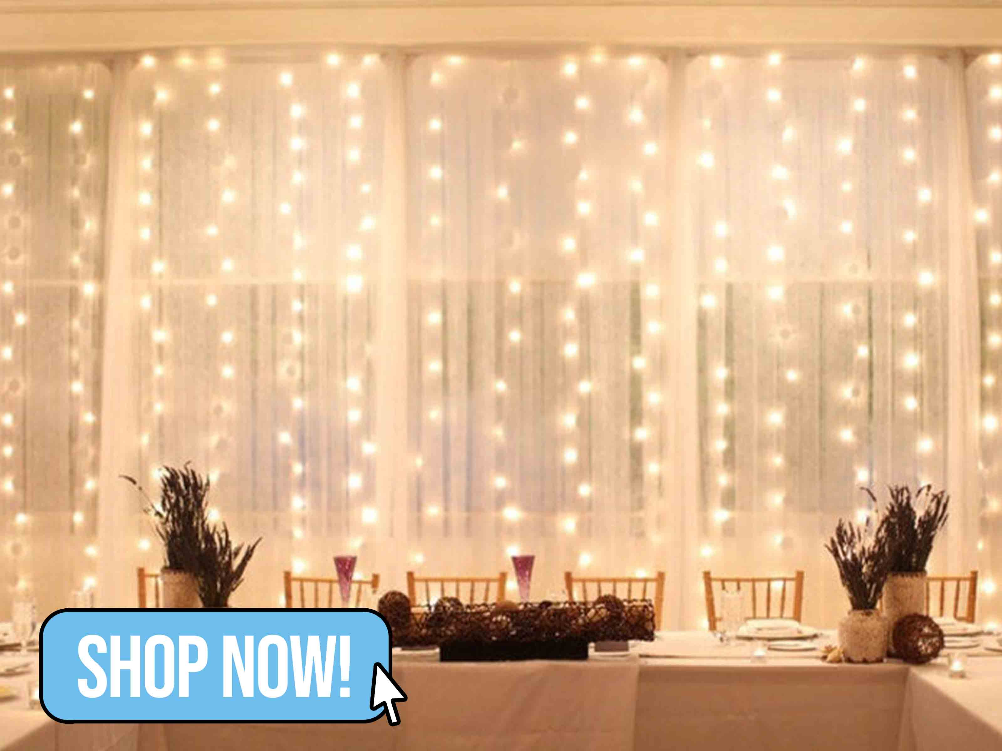 LED Window Curtain Lights - SupplyFlora