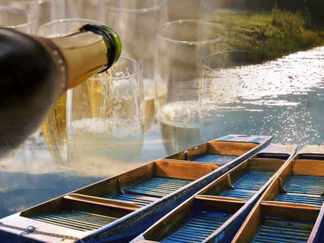 Champagne Punting